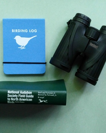 My birding essentials.